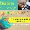 電磁波&アーシング Onlineセミナー120分ウェブチケット6/21(日)14時〜16時