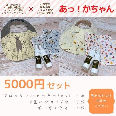 【ギフト:あっ!かちゃん】5000円セット