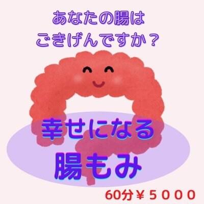 腸もみ[腸内環境を整え温かい体に・便秘改善・痩せ体質に]
