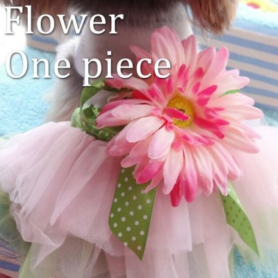 【ドッグウェア】愛犬のためのギフトに☆大きなお花が付いたフラワーワンピースです♪ ハロウィン コスプレ 犬 小型犬 かわいい オシャレドッグウェア 犬 犬服 ワンピース フラワーモチーフワンピ 白 ホワイト(mg-0120)