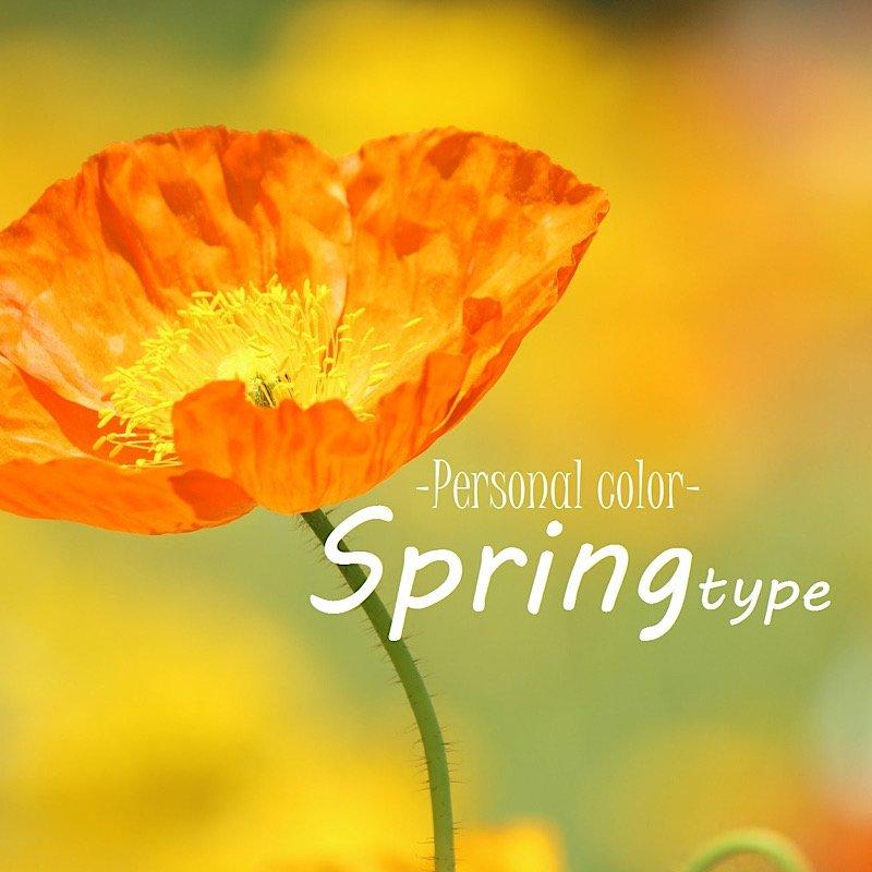 【実質無料】Springタイプさん向け アフターフォローチケットのイメージその1