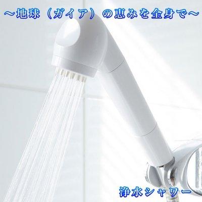 ガイア水135浄水シャワーヘッド(本体+初回カートリッジセット)カード...