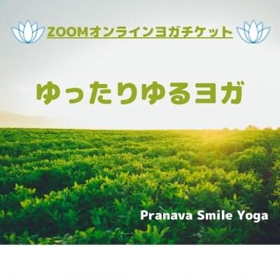❝期間限定価格 880円❞[zoomオンラインヨガ(60分レッスン)]【ゆったりゆるヨガ】