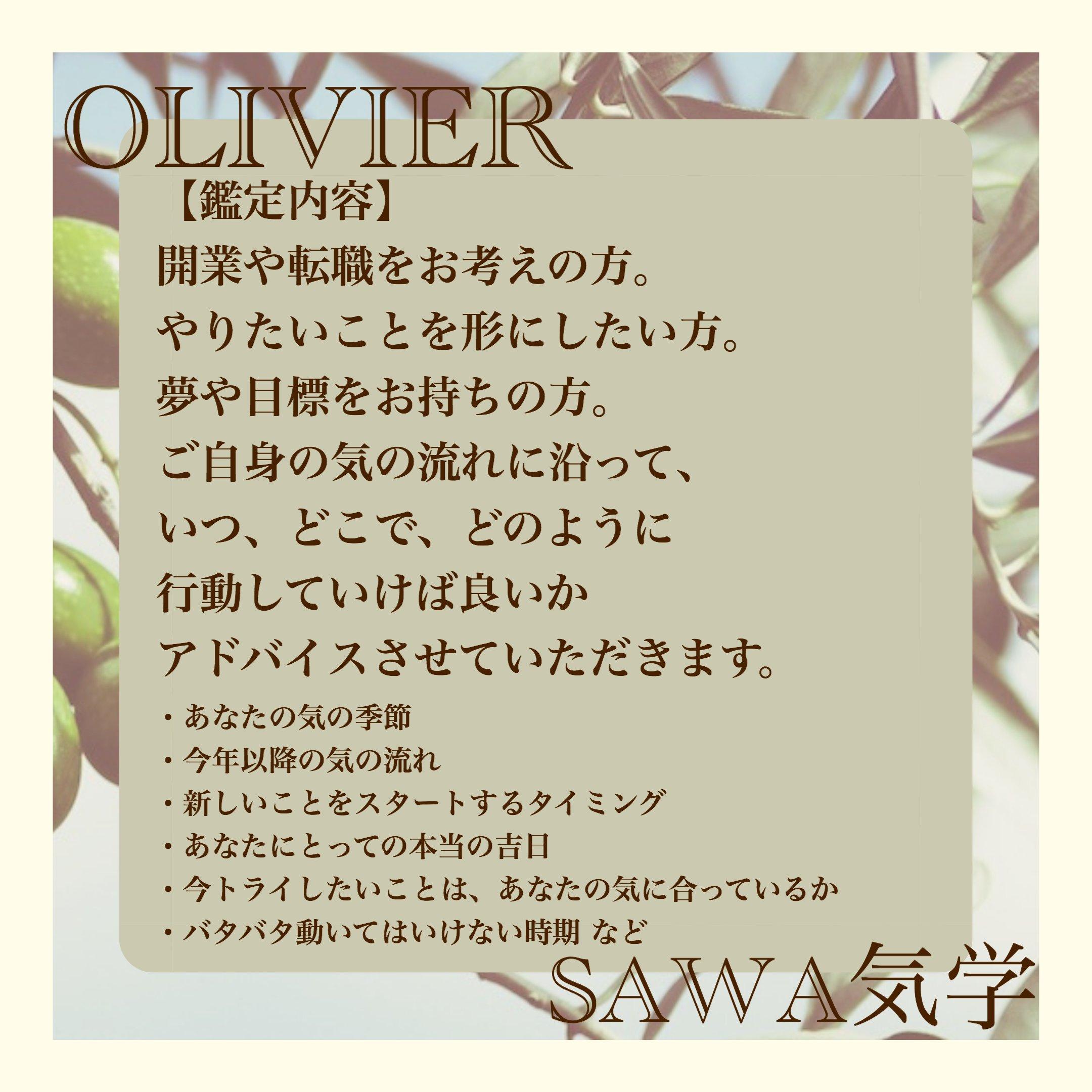SAWA気学オンライン鑑定60分〜【開運】天の流れに乗る人生の戦術〜のイメージその3