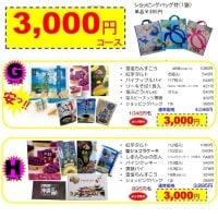GoTo Travel キャンペーン価格!!【3000円コース】