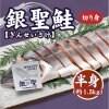 北海道日高産の天然銀聖鮭/切り身<半身>【送料無料】