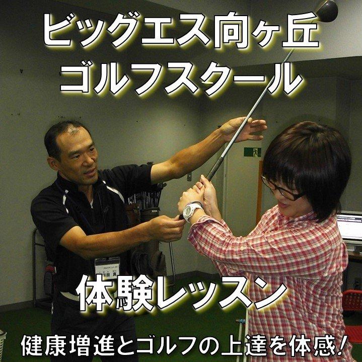 ビッグエス向ヶ丘ゴルフスクール体験レッスンチケット/神奈川県川崎市多摩区登戸にあるフィットネスクラブ「ビッグエス向ヶ丘」のゴルフスクールのイメージその1