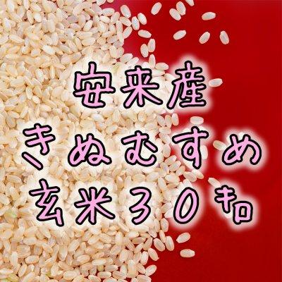 玄米30kg 安来産きぬむすめ
