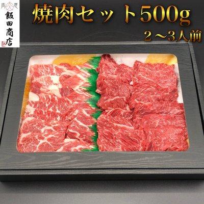 焼肉セット500g カルビ&ハラミ人気部位セット
