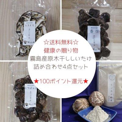 [送料無料]椎茸をお中元に!健康の贈り物。霧島産原木干しいたけ|森からの贈り物4点セット|包装無料