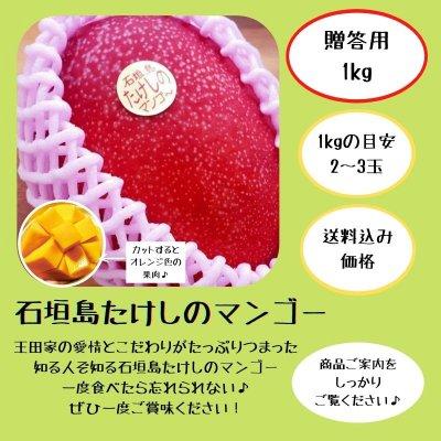 <贈答用>1㎏(2〜3玉)石垣島たけしのマンゴー  ※支払いはクレジット決...