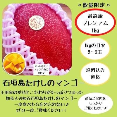 <プレミアム>1㎏(2〜3玉)石垣島たけしのマンゴー  ※支払いはクレジッ...