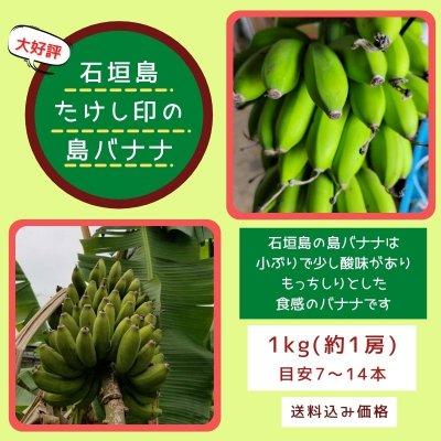 数量限定!!1㎏(1房7〜12本程)石垣島たけし印の島バナナ ※支払いはク...