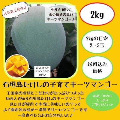 石垣島たけしの子育てキーツマンゴー/2㎏(2〜3玉) ※支払いはクレジット...