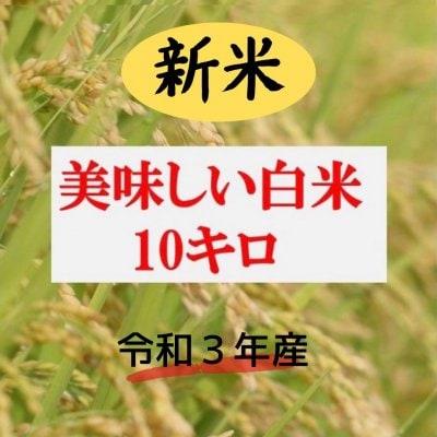 白米 10㎏   ★コシヒカリ★ 安心、安全な農法!!