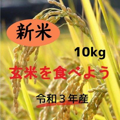新米・玄米 10㎏   ★コシヒカリ★ 安心、安全な農法!期間限定!