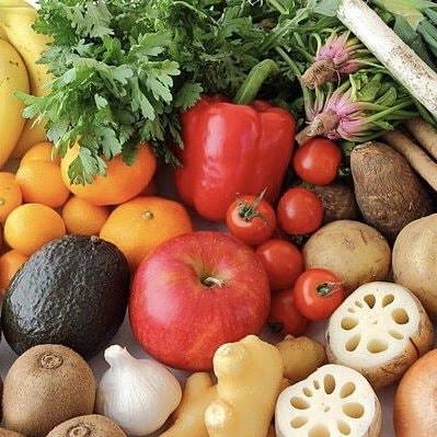 送料無料の新鮮野菜詰め合わせ
