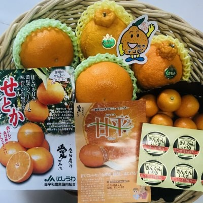 柑橘フルーツ4品セット
