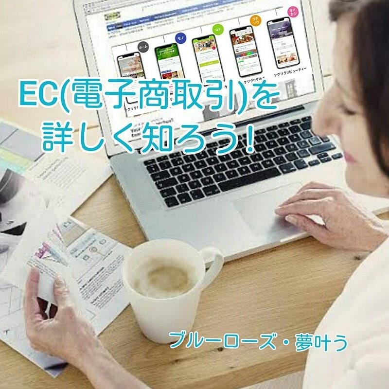 未来を掴む!【ZOOM対応可】EC(電子商取引)を自社ショップに組み込み収益をUPさせる方法のイメージその1