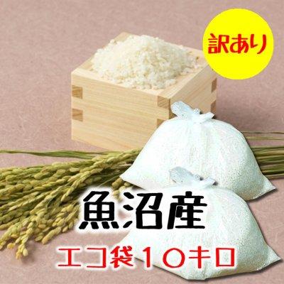 【訳あり処分】10kg新潟魚沼産コシヒカリ精米(エコ袋)|常温同梱可能