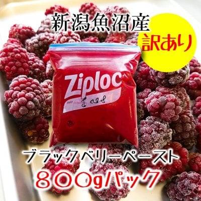 【訳あり処分】新潟魚沼産ブラックベリーペースト800g/加工用 冷凍