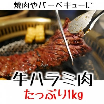 【在庫処分品】牛ハラミ肉/1kg冷凍/サガリ