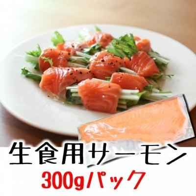 【業務用在庫処分】お刺身サーモン(ハーフカットロイン)生食用300g|冷凍