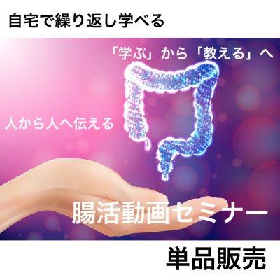 10月限定好ポイント還元!【動画で学べる】腸活パーフェクトセミナー |二次使用可|単品販売|