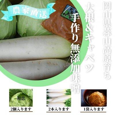 大根&キャベツ 手作り無添加味噌セット