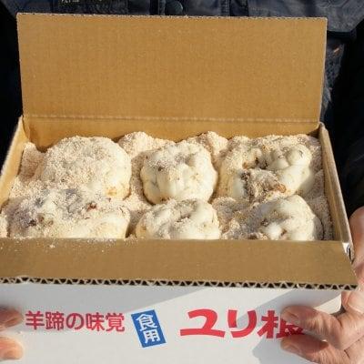 ゆり根 北海道産 2キロ 2L〜Lサイズ混 優品