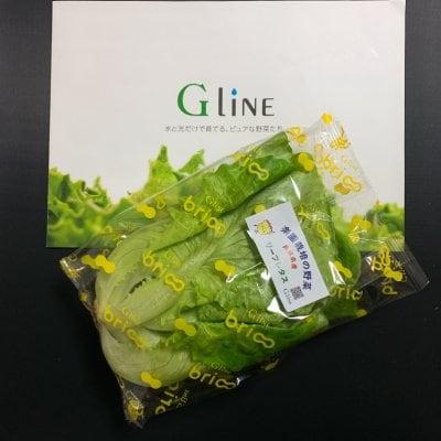 無農薬で安心人工光型植物工場のお野菜現地受取販売180円シリーズ