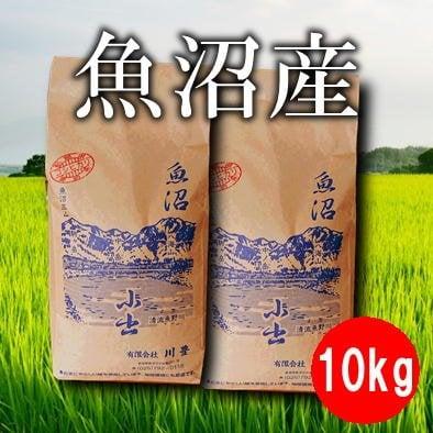 【地域限定】10kg魚沼産コシヒカリ 5kg×2(令和元年産)