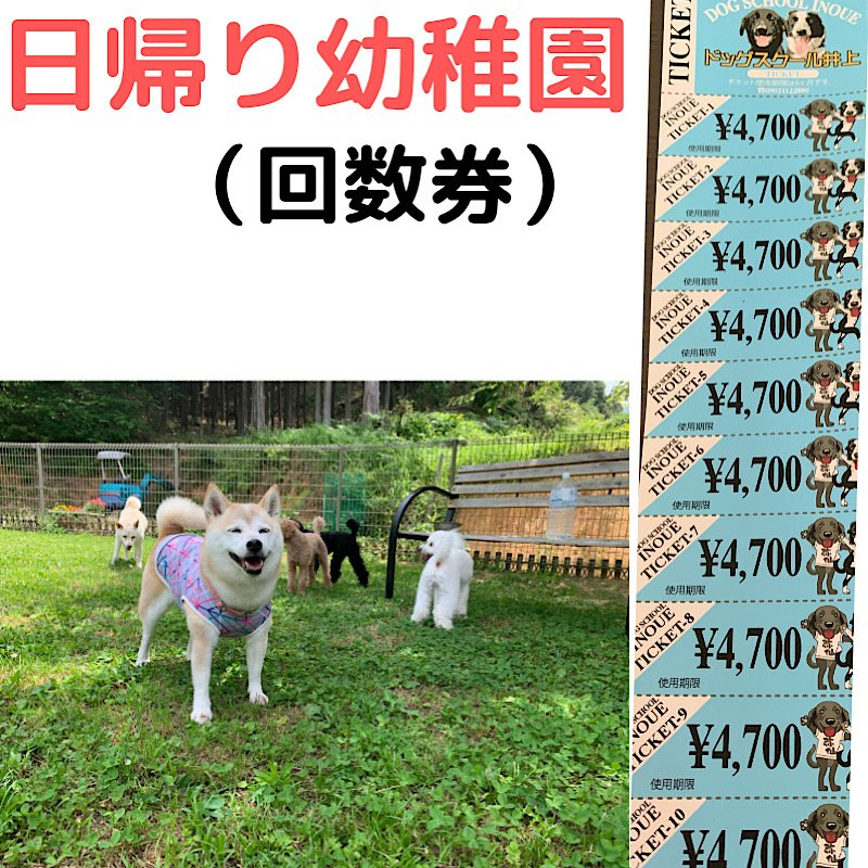犬の幼稚園 引換券のイメージその1