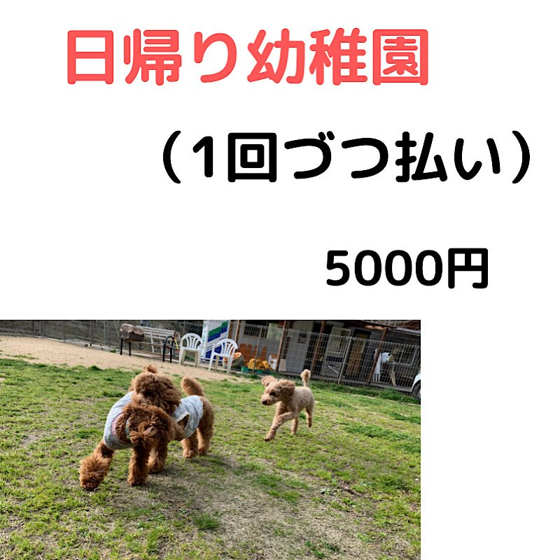 犬の幼稚園 1回利用 引換え券のイメージその1