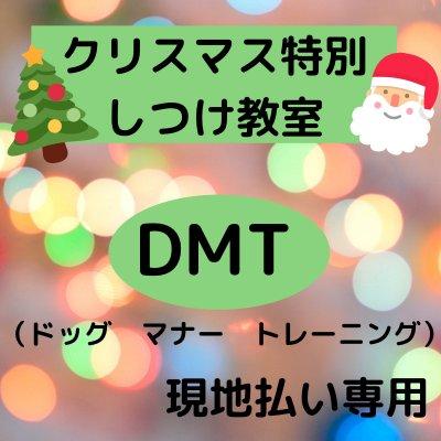 クリスマス特別しつけ教室
