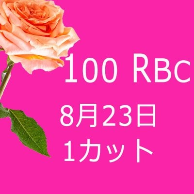 100 Real Beauty Change 8月23日モニターモデル(1カット)