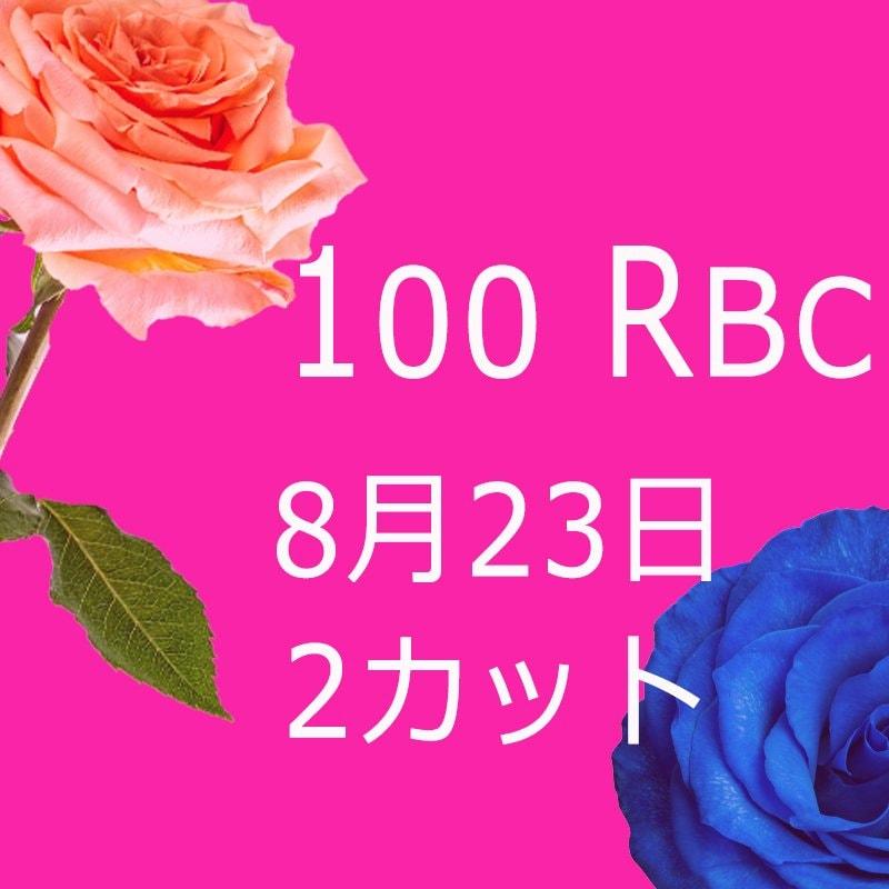 kailun様専用 100 Real Beauty Change 8月30日モニターモデル(2カット)1回目のイメージその2