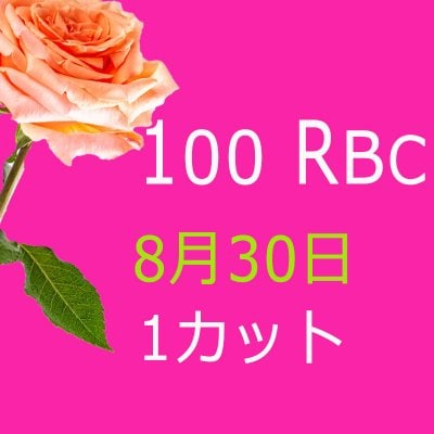 100 Real Beauty Change 8月30日モニターモデル(1カット)