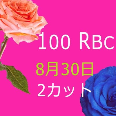 kailun様専用 100 Real Beauty Change 8月30日モニターモデル(2カット)1回目
