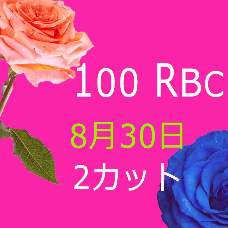 [複製]kailun様専用 100 Real Beauty Change 8月30日モニターモデル(2カット)2回目のイメージその1