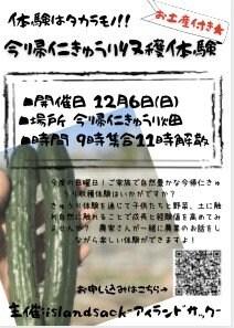 【キュウリ収穫体験】 ファミリー