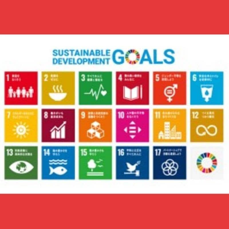 SDGs丸わかりセミナー  [ 土佐堀会メンバー用 ]のイメージその1