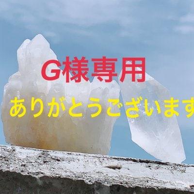 [複製]G様専用