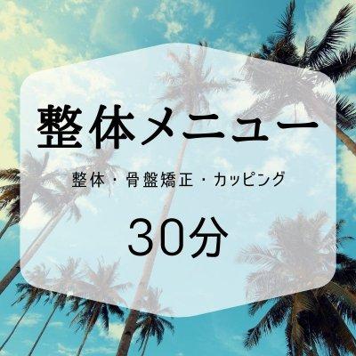 【整体メニュー|会員】30分