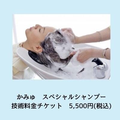 【現地決済専用】かみゅスペシャルシャンプー技術料金チケット
