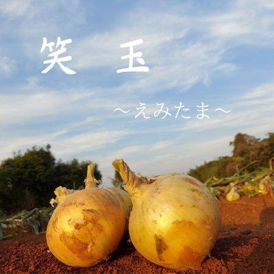 【九州圏内送料無料】唐津特産品セット!! 笑玉〜えみたま〜 S玉 1...