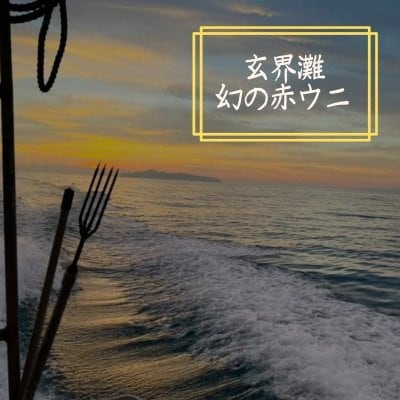 【限定】幻の唐津産 赤ウニ