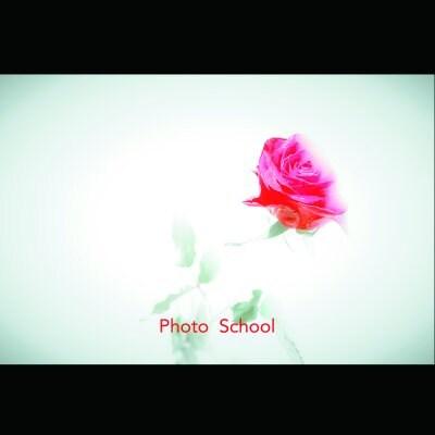 写真講座(中級〜上級向け)