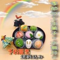【予約販売】季節の上生菓子《水無月(みなづき)》|8個入り|クール便送料込み|6月14日締切、6月16日発送開始