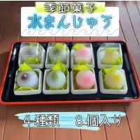 【季節菓子】水まんじゅう〈4種類 8個入り〉